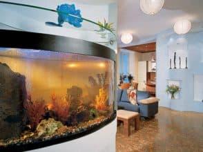 Гнутое стекло для аквариума толщиной 8 мм