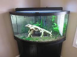 Гнутые стекла для аквариумов